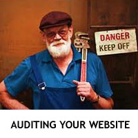 Website Auditing