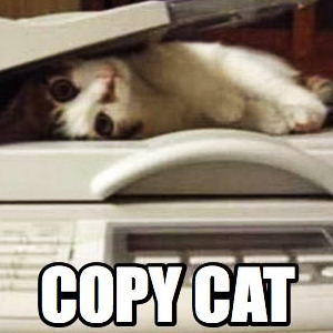 Copy Cat Blogger