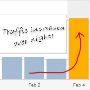 Fake Traffic