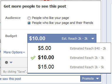 facebook promoted posts budget options