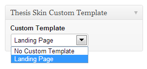 Thesis Skin Custom Template