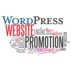 Promoting WordPress Blog